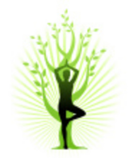 Profile picture for Pauline Nunn Yoga & Complementary Therapies