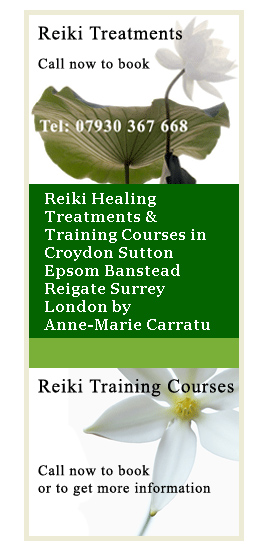 Profile picture for Reiki Light