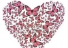 Thumbnail picture for Butterfly Healing